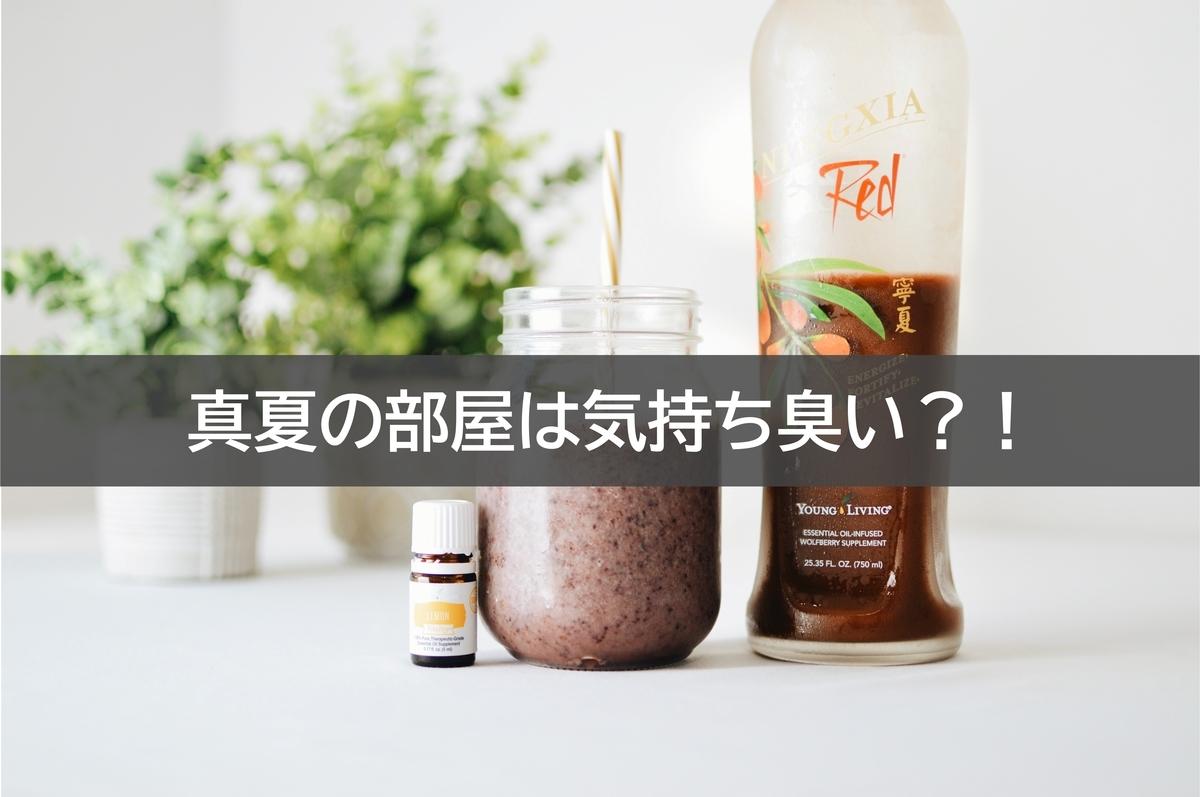 f:id:takumi19890923:20200815110625j:plain